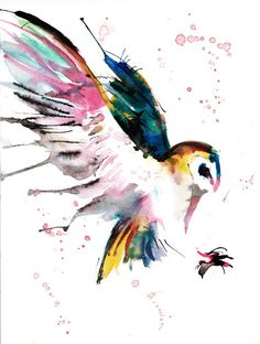 painting ink color owl flying speed paintings barn owl aquarelle ...