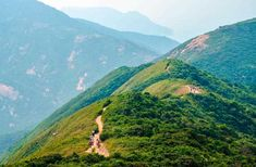 20 Ultimate Things to Do in Hong Kong – Fodors Travel Guide