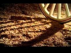 Budweiser Clydesdale commercial - American Dream