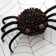 La recette de la mygale cupcake