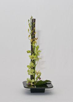ikebana  | Design Influenced By Ikebana - Louise West