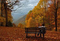 West Virginia Scenic Drives Waterfalls | Babcock State Park - West Virginia