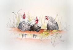 kippen in de Delftse Hout, aquarel en potlood