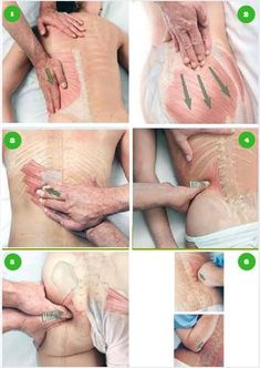 Pin by drake massage on Thai Massage Body Therapy, Massage Therapy, Physical Therapy, Acupuncture, Collier Cervical, Psoas Release, Reflexology Massage, Massage Tips, Thai Massage