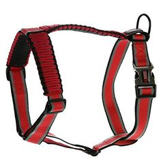 KONG Reflective Paracord Harness Red LARGE >>> Remarkable product available now. : Dog harness