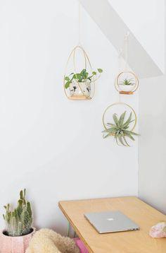 39 best pflanzen einrichten und wohnen images on pinterest indoor house plants plants and. Black Bedroom Furniture Sets. Home Design Ideas