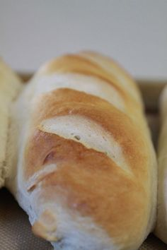 Learn how to make soft and crusty french bread at home with this recipe that includes easy to follow step by step. herbed garlic butter recipe included.