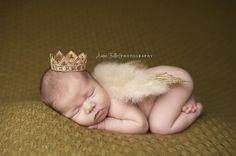 Glitter Tan Feather Angel Wings Newborn Baby Photography Prop   Beautiful Photo Props