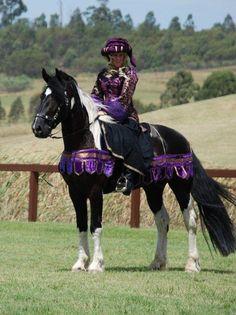 Medieval Horse Sports Australia