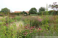 Oudolf Garden- Hummelo, Netherlands