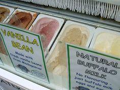 Vanilla Bean or Natural Buffalo - http://www.gucciwealth.com/vanilla-bean-or-natural-buffalo/