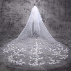 a94c23a9d18c 5 m Katedral Kerudung Pengantin Kerudung Pernikahan Pengantin Panjang  Appliques Bridal Veil 5 Meter 2017 Baru Aksesoris Pernikahan