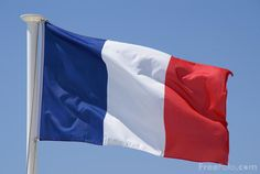 social studies: flag--use flag book as model for flag of France from construction paper (use white as base, cut blue and red stripes ⅓ of the paper, tape/glue, optional stick from the yard!) Big hit.