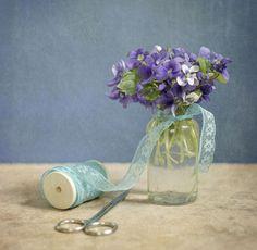 Violets   Flickr - Photo Sharing!