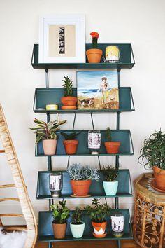 A shelf full of greenery