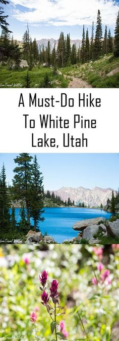 A MustDo Hike to White Pine Lake Utah Hikes Outdoors What to Do Where to Go Salt Lake City Little Cottonwood Canyon Places To Travel, Places To Go, Utah Vacation, Vacation Ideas, Utah Adventures, Cottonwood Canyon, Utah Hikes, Utah Hiking Trails, Appalachian Trail