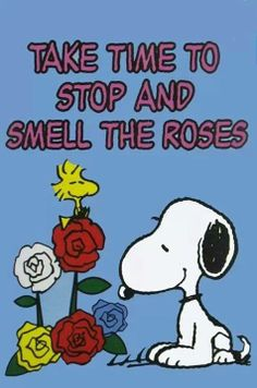 roses☀️. snoopy :)   ☀️Woodstock