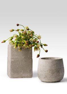 Love the simple shapes and texture on these containers