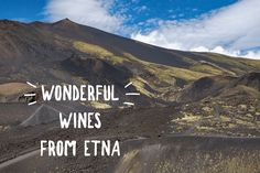 Exploring the Wines of Sicily's Etna Region Find Instagram, Instagram Worthy, Travel Aesthetic, Wine Drinks, Travel Essentials, Sicily, Italy Travel, The Locals, Wonders Of The World