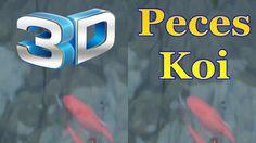 Los peces Koi son una especie de carpa autóctona de China famosa en el mundo entero por su colorido y su tradición en Japón. Seguramente os suenen por ser uno de los símbolos japoneses mas utilizados para tatuajes.