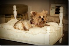 outdated end table turned shabby-chic pet bed