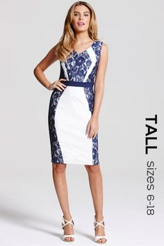 Tall Cream and Navy Lace Panel Dress - Tall from Little Mistress UK