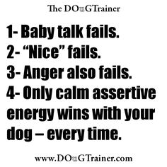 Nature has programmed your dog to read your energy every moment that you're interacting with him.   Use that character trait of your dog to your advantage by always acting calmly and assertively to him. His response will be to become a more calm and submissive follower.
