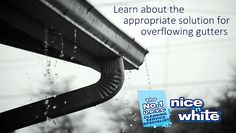 'Nice N White' provides maintenance and cleaning services in the UK, among them they are the specialist of gutter related services and has been offering their quality services for years. Visit nice-n-white.co.uk for the best gutter services. see more : http://bit.ly/2q62wuw