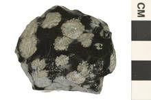 Snowflakes on obsidian? Or snowflake obsidian?