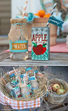 Yee Haw!  Farm Party by Lisa Frank and Lia Griffith: printable water and juice box wraps and straw flags