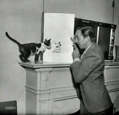 Walt Disney enseña a Cat ... un Mickey Mouse 1931 :D