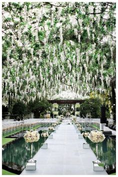 stunning aisle. i would hang lavender and make sure there are no mosquitoes.