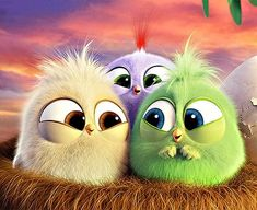 Hatchlings Angry Birds Wallpapers 60 Articles And Images Curated On Pinterest In 2020 Angry Birds Angry Birds Movie Birds