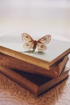 The Dark Artifices Shadowhunters Aesthetic//Livia Blackthorn Photo D Art, Photo Book, Book Letters, Butterfly Kisses, Butterflies, Butterfly Books, Butterfly Art, Monarch Butterfly, The Dark Artifices