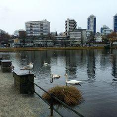 Breiavannet Stavanger/Norway