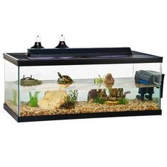 Turtle Tank 90 Gallon Black 48x24x18h, R-Zilla -- Featuring an extra large, clean habitat for housing adult aquatic turtles Access panel designed to accommodate filter One-piece molded frame for added strength Water friendly reptile habitat