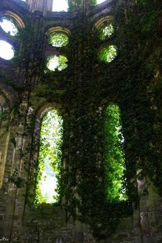 Overgrown part of the house? Decoration Plante, Slytherin Aesthetic, Nature Aesthetic, Abandoned Places, Architecture, Beautiful Places, Scenery, World, Plants