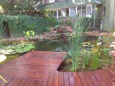 задний двор-естественно-бассейн-11