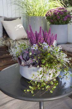 Høstens planter skaper en trivelig stemning på uteplassen. Lag det hyggelig ute…