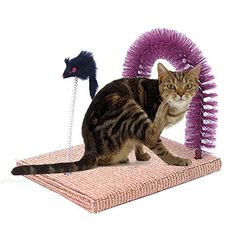 Cats Toys Ideas - Evalan Cat Scratching Post Arch Self Groomer and Massage Durable Bristles with Mouse Moving Cats Toy - Ideal toys for small cats Cat Climbing Shelves, Cat Behavior Problems, Homemade Cat Toys, Massage, Cat Tree Condo, Cat Id Tags, Cat Shedding, Cat Scratching Post, Cat Fleas