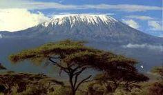 Google Image Result for http://www.kilimanjaroafricanrestaurant.com/wp-content/flagallery/kilimanjaro/kilimanjaro2.jpg