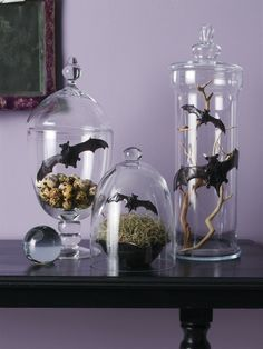 Apothecary Jar Decorating Ideas | halloween but not gross, gorey, or witchy.