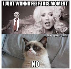 Grumpy Cat sings Feel This Moment by Pitbull ft Christina Aguilera #GrumpyCat #GrumpyCatMeme