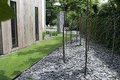 Garden,  stone around trees - NICE