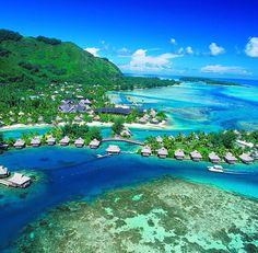 yes please! - Tahiti