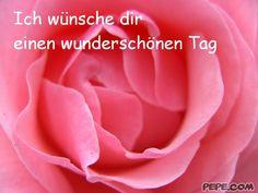 http://scouteu.s3.amazonaws.com/cards/images_vt/merged/ich_wuensche_dir_einen_wunderschoenen_tag_2.jpg