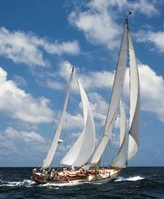 Antigua's Classic Yacht Regatta, 1995 would love to go sailing on a boat like this