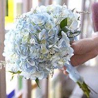 flowers? (not blue)