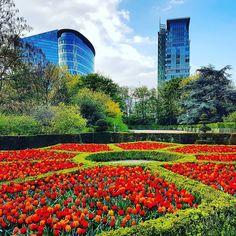 Nice spot in Brussels Coin sympa à Bruxelles  #benheinephotography #bruxelles #visitbrussels #flowers #garden #jardin #parc #fleurs #photography #colorful #photographie #city #ville #red