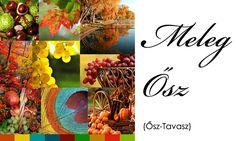 meleg osz2 Color Me Beautiful, Warm Autumn, Colors, House, Fashion, Moda, La Mode, Colour, Haus